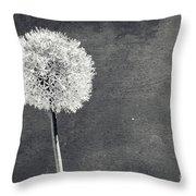 Vintage Allium Flower Throw Pillow