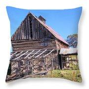 Vintage Barn Beauty II Throw Pillow