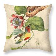 Vintage Bird Study-b Throw Pillow