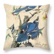 Vintage Bird Study-f Throw Pillow