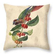 Vintage Bird Study-h Throw Pillow