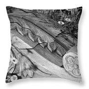 Vintage Carved Facade  Throw Pillow