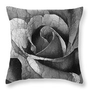 Vintage Cracked Rose Throw Pillow