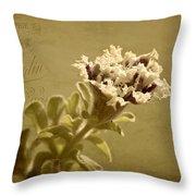 Vintage Double Petunia Throw Pillow
