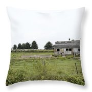 Vintage Farm Throw Pillow