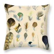 Vintage Feather Study-c Throw Pillow