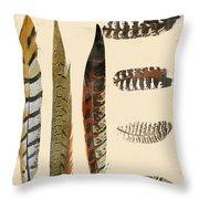 Vintage Feather Study-jp2085 Throw Pillow