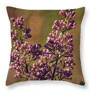 Vintage Lilac Throw Pillow