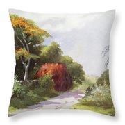 Vintage Manoa Valley Throw Pillow