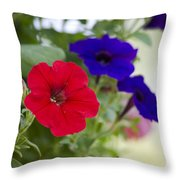 Vintage Petunia Flowers Throw Pillow