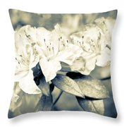 Vintage Rhododendron Spring Throw Pillow