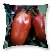 Vintage Romas Throw Pillow