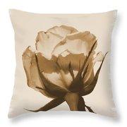 Vintage Rose 2013 Throw Pillow
