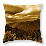 Vintage Weather Throw Pillow