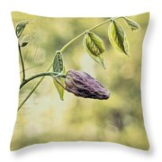 Vintage Wisteria Throw Pillow
