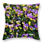 Viola's Fantasy  Throw Pillow