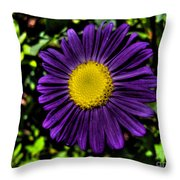 Violet Aster Throw Pillow