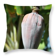 Violet Banana Blossom Throw Pillow