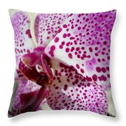 Violet Beauty Throw Pillow