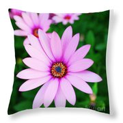 Violet Daisy Throw Pillow