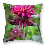 Violet Eyecatcher Throw Pillow