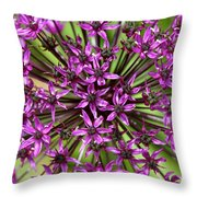 Violet Fireworks Throw Pillow