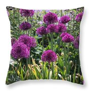 Violet Flowerbed Throw Pillow