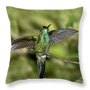 Violet-fronted Brilliant Throw Pillow