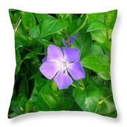 Violet Herbaceous Periwinkle Throw Pillow