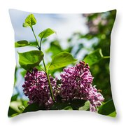 Violet Lilacs And A Bee Throw Pillow