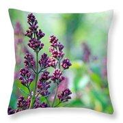 Violet Lilacs Budding Throw Pillow
