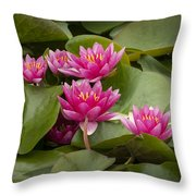 Violet Lillies Throw Pillow