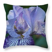 Violet Lines Throw Pillow