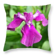 Violet Moment Throw Pillow