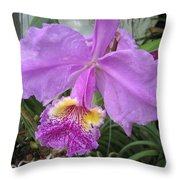 Violet Orchid Throw Pillow
