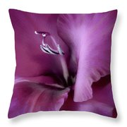 Violet Passion Gladiolus Flower Throw Pillow