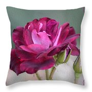 Violet Red Rose Throw Pillow