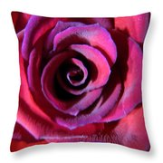Violet Tinge Throw Pillow