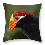 Violet Turaco Western Africa Throw Pillow