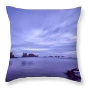 Violet Vista Throw Pillow by Jon Glaser