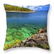 Violets At Georgian Bay Throw Pillow by Elena Elisseeva