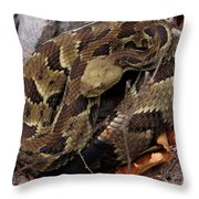 Viper Coil Throw Pillow