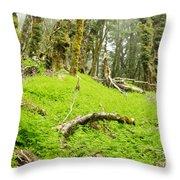 Virgin Mountain Rainforest Of Marlborough Nz Throw Pillow