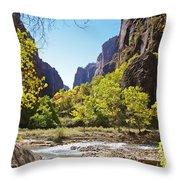 Virgin River In Zion National Park Throw Pillow