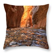 Virgin River Rocks Throw Pillow
