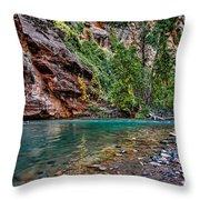 Virgin River Zion National Park Utah Throw Pillow