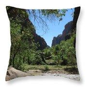 Virgin River  Zion Np Throw Pillow