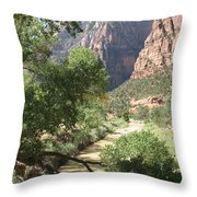 Virgin River Zion Valley Throw Pillow