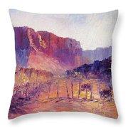 Virgin Valley View Throw Pillow