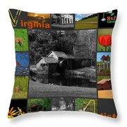 Virginia Artist  Throw Pillow